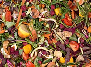 食品残渣・有機汚泥